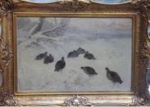 ArchiwalneZygmuntowicz -  Kuropatwy na śniegu