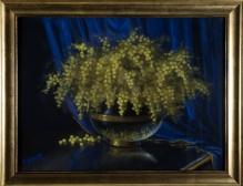 Saperski T.       -         Mimozy -  pastel