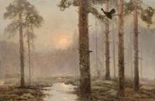 w kolekcjach___Korecki Wiktor (1897-1980)  Głuszec na drzewie