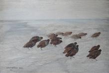 W kolekcjach____Dembińska S. - Kuropatwy na śniegu 1932 rok